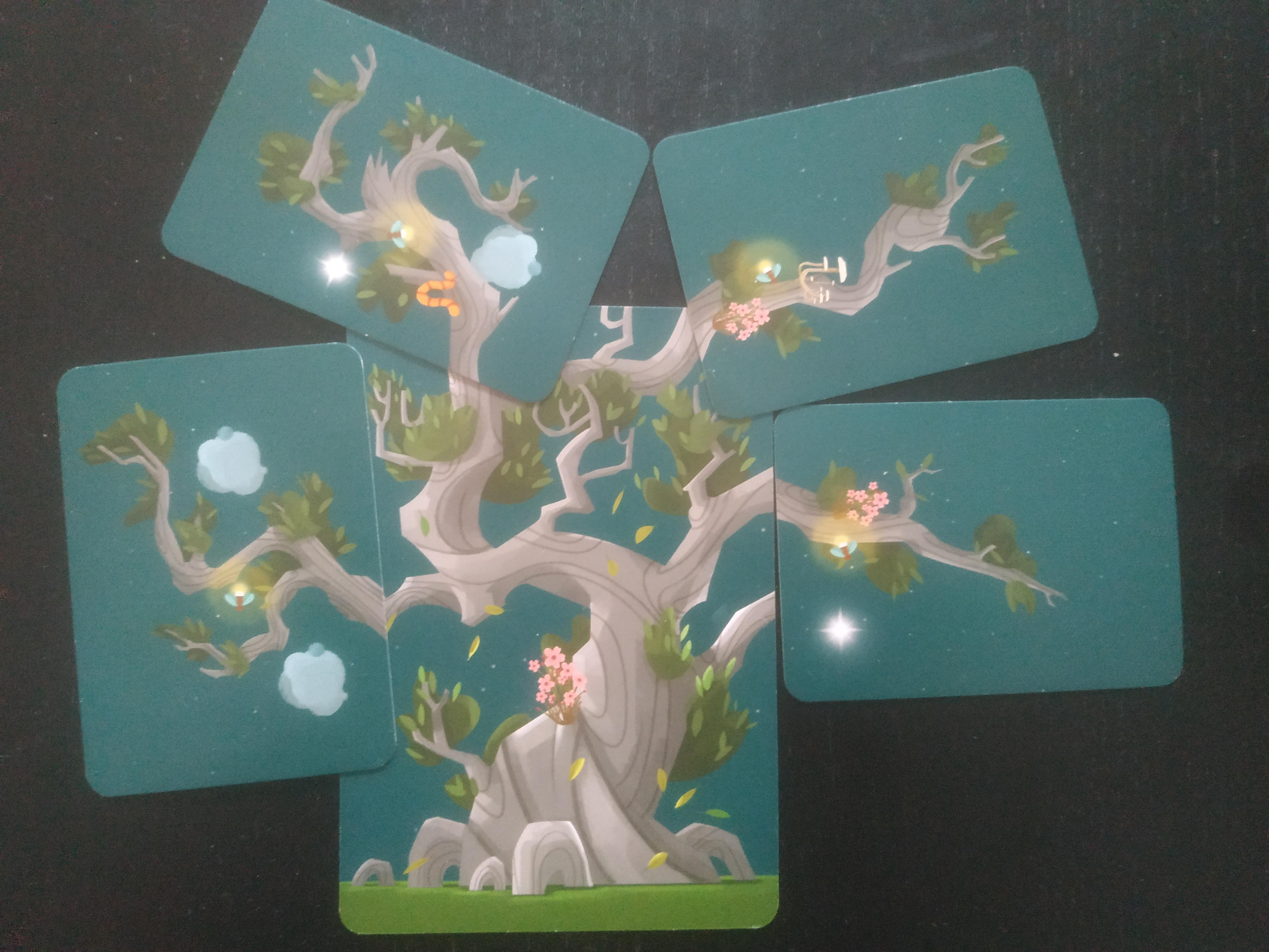 kodama-jeu-societe-pose-cartes-nature-arbre-japon